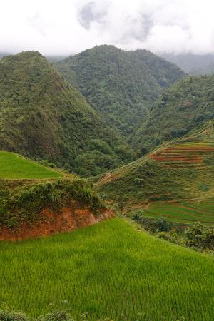 sapa: Sapa highlands in Vietnam