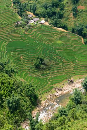 padi: View over river and rice paddy terraces in mountainous Sapa highlands, Vietnam