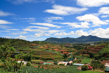 hiils: Vietnam Landscape of farm fields in Dalat highlands, Asia Stock Photo
