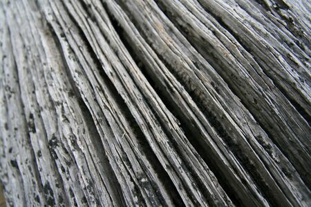 Old driftwood abstract background Stock Photo