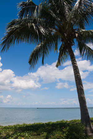 Palm Tree Tropical Island in Borneo, Malaysia