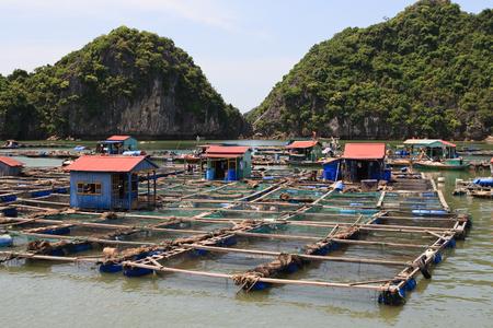 Floating fishing village, Vietnam, Asia