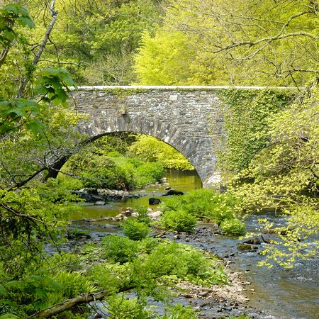 old bridge: Old stone bridge spanning a river and surrounded by green leaved trees in springtime.