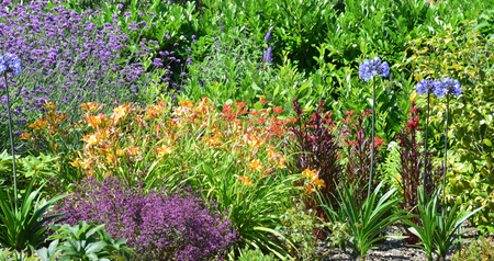 the color of silence: Garden scene resonant of such a sight all over the world where people sculpt,design and tend thier little piece of heaven.