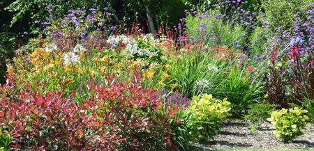 jardines con flores: Escena Jardín resonante de un espectáculo tan en todo el mundo donde la gente esculpen, diseño y tienden emabrgo pedacito de cielo.