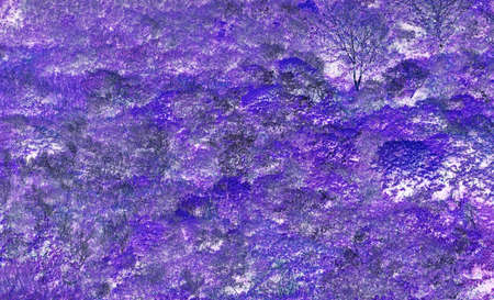 natures: Background based on geological and botanical material and natures design. Stock Photo