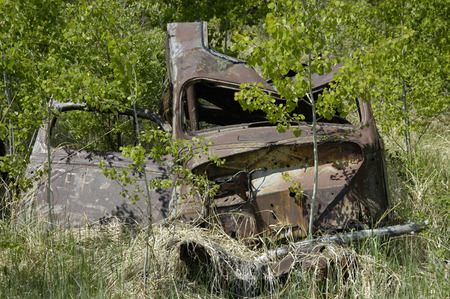 abandoned car: Abandoned car in bushes.