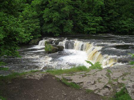wensleydale: Waterfall in Aysgarth Wensleydale North Yorkshire