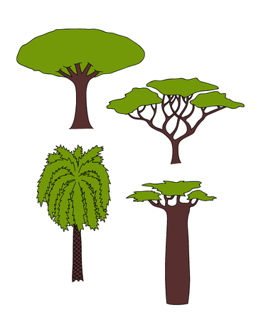 Vector floral hand drawn african trees - date palm, acacia, baobab tree, dragon tree. isolated digital nature sketch