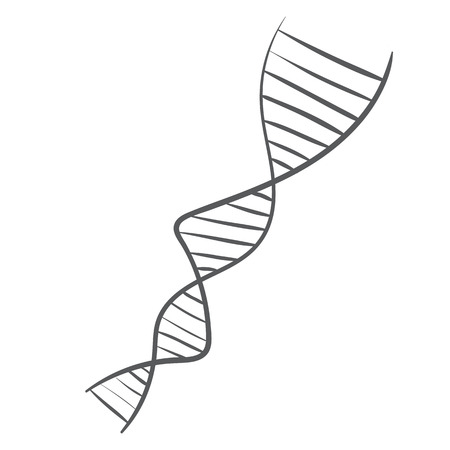 deoxyribonucleic: Vector hand drawn DNA spiral. deoxyribonucleic acid symbol sketch on a white background Illustration