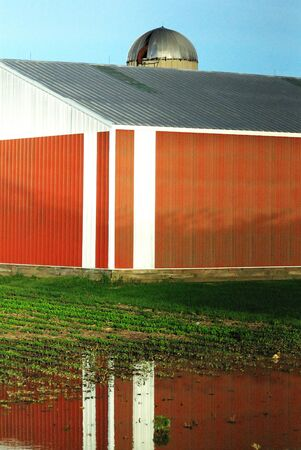 Red Shed in Flooded Field photo