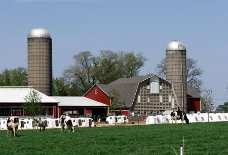 Farm Scene with Barn, Silos, and Calf Pens