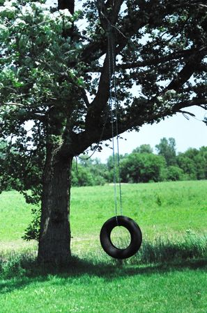 Old Tire Swing in the Shade Stock Photo