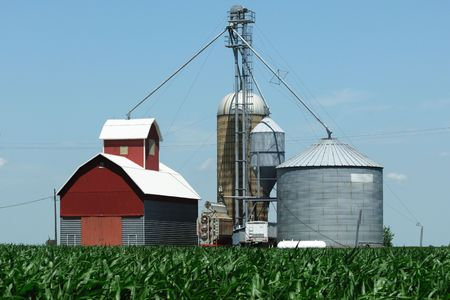 Grain Bins Over the Corn Field