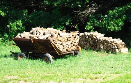 outdoor fireplace: Firewood Stacked on the Ground and in Wagon