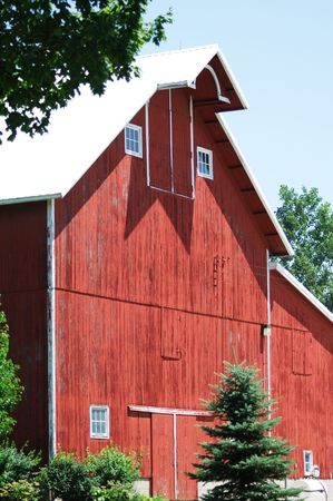 Old Red Barn and Evergreen Tree 스톡 콘텐츠