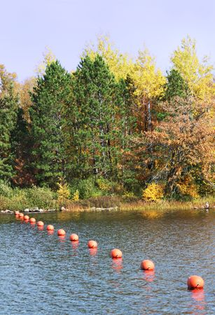 floats: Orange Floats in Lake by Fall Trees Stock Photo
