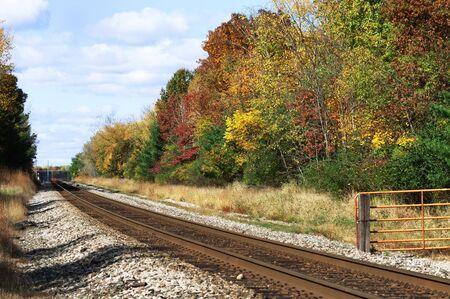 Railroad Tracks through Autumn Trees photo