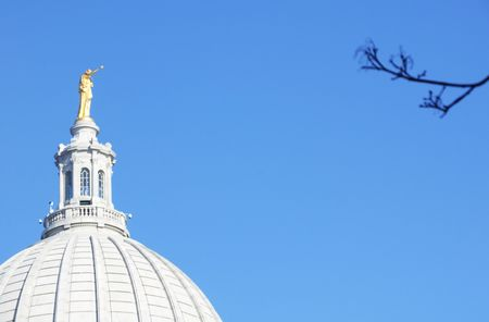 Tree Branch by Wisconsin State Capitol Building photo