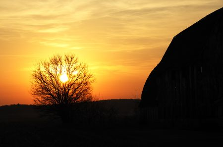 Burning Bush and Barn Silhouette