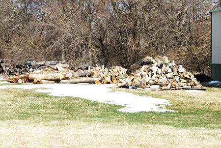 Pile of Firewood by Melting Snow photo