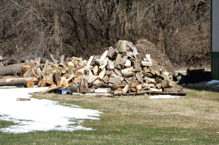 Pile of Firewood by Snow photo
