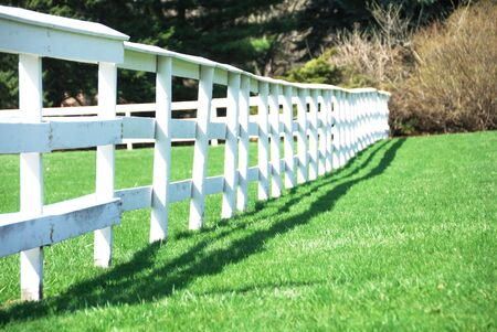 White Farm Fence in Perspective