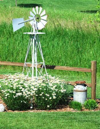 Windmill, Daisies, and Milk Can photo