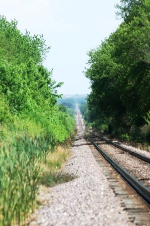 Railroad Tracks through the Trees Stock Photo - 5812603