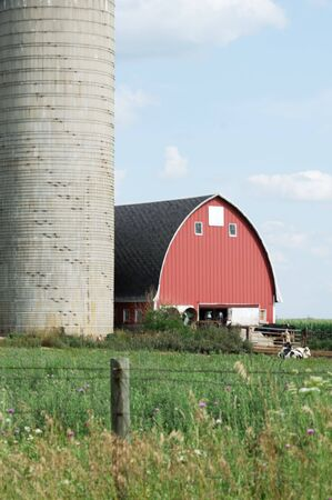 Silo and Red Barn Stock Photo - 6282648