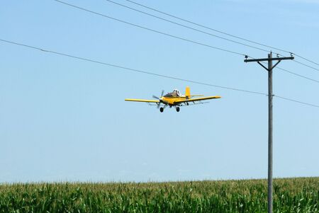 Yellow Cropduster