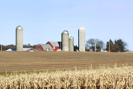 Farm and Cornfield