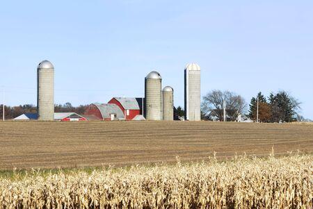 Farm and Cornfield