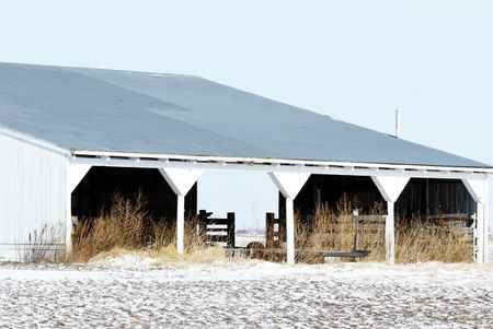 Abandoned Paddock in Winter