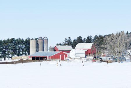 Winter Farm  Scene Stock Photo - 7617665