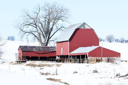 Red Farm Buildings in the Snow Reklamní fotografie