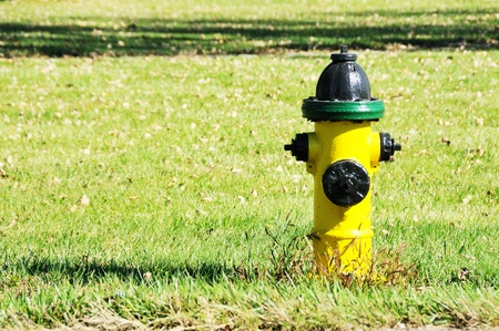 Yellow, Black, and Green Hydrant