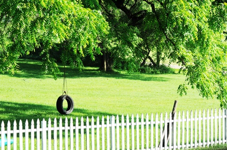 summer tire: Tire Swing in the Shade