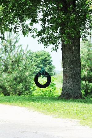 rubber ring: Tire Swing Vertical