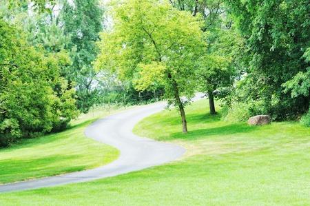 curving: Curving Driveway