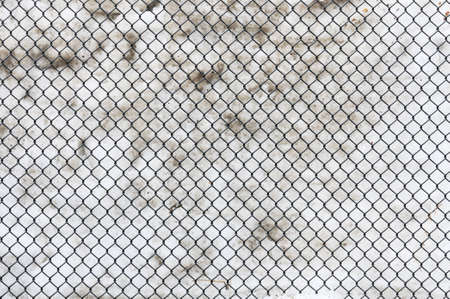 Snow Through Fence photo