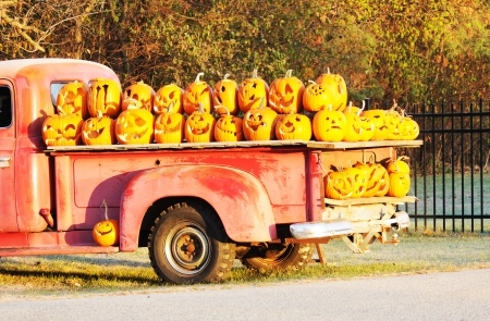 Load of Jack O Lanterns