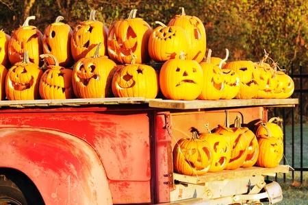 Load of Jack O Lanterns photo