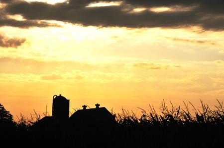 Farm Silhouette photo