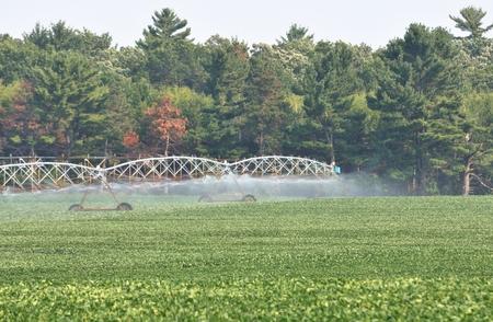 Pivot Irrigation photo