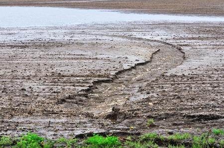 gully: Erosion