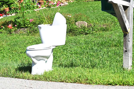 Toilet at the Curb