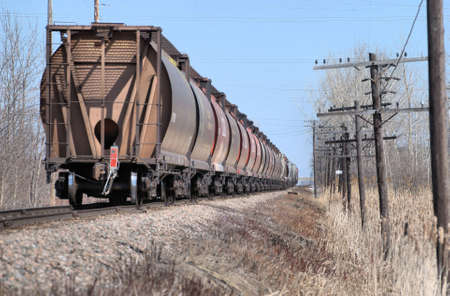 Stopped Freight Train