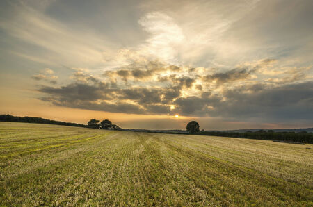 autumn sunset in farm fields with corn stubble at harvest time, cornwall, uk