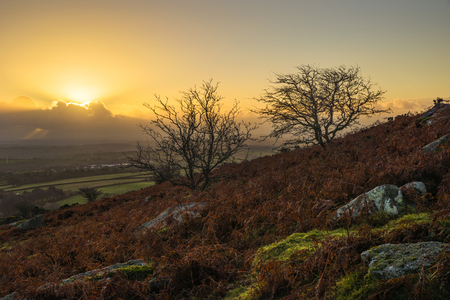 Sunrise over the moors in the Autumn, with a golden sky , Caradon Hill, Cornwall, UK Banco de Imagens